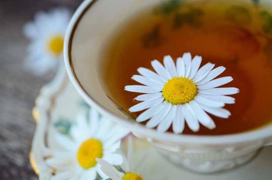 Essential Oils Care - Chamomile Oil Ingestion