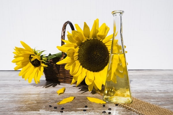 Sunflowers and a decanter with oil